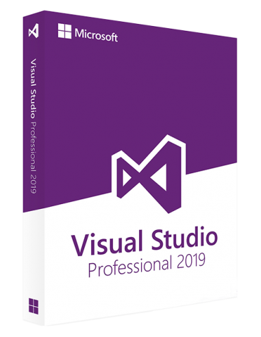 Microsoft Visual Studio Professional...